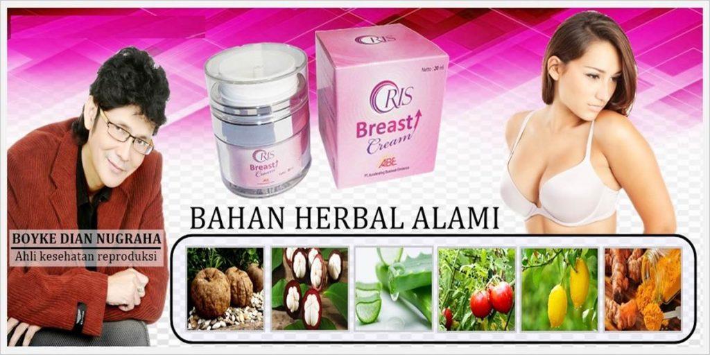 Komposisi Oris Breast Cream 100% herbal alami