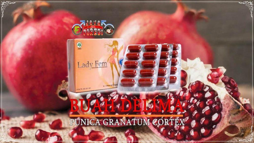 Komposisi Ladyfem mengandung herbal buah delima