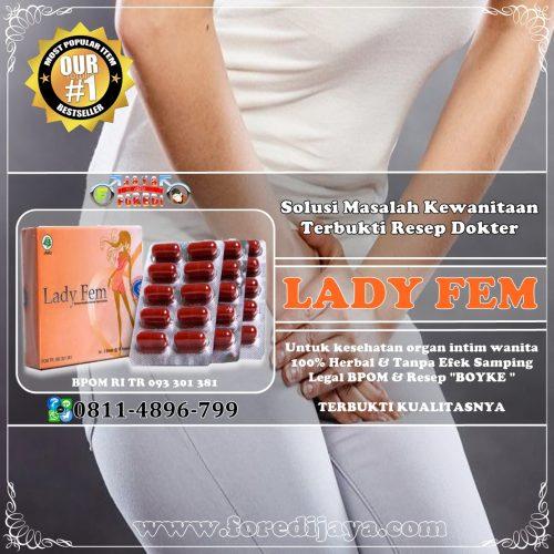 Jual Ladyfem Murah di Cilegon Banten