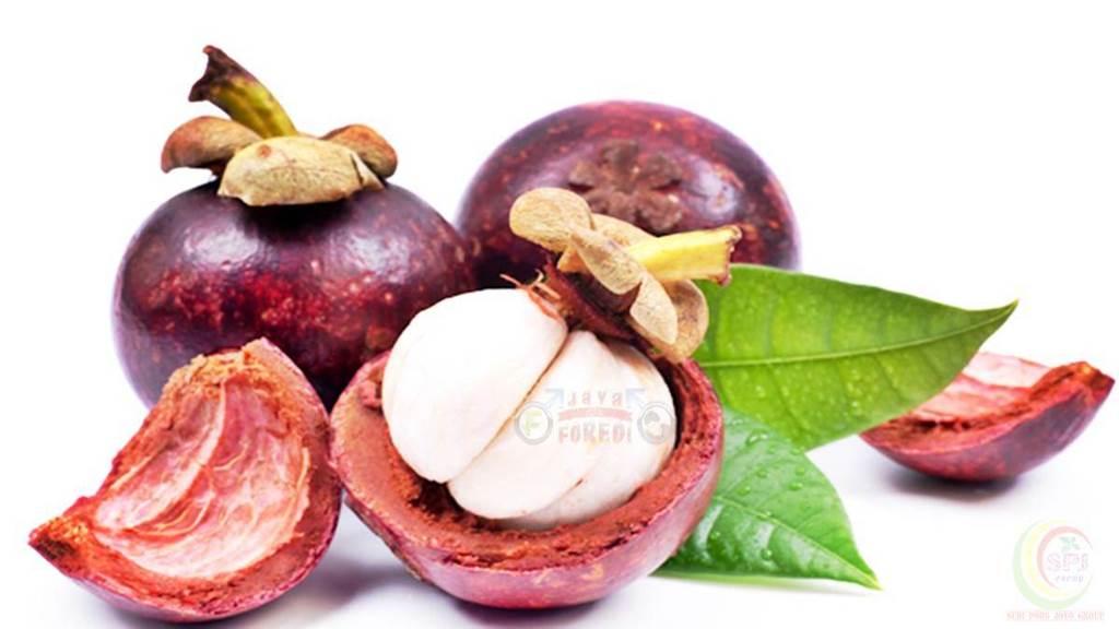 Komposisi Oris Breast Cream mengandung Ekstrak Buah Manggis