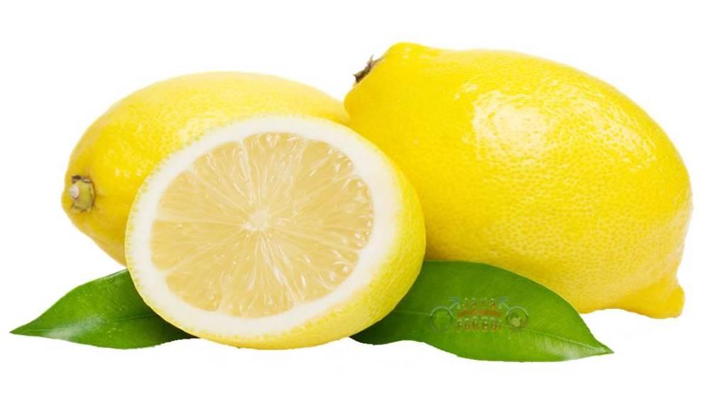 Komposisi Oris Breast Cream mengandung Ekstrak buah Lemon