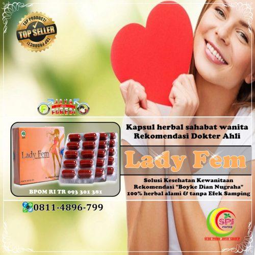 Jual Ladyfem Boyke Murah di Tanggamus Lampung