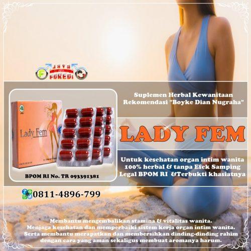 Jual Ladyfem Boyke Murah di Way Kanan Lampung