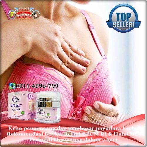 Jual Oris Breast Cream asli harga murah di Kudus Jawa Tengah