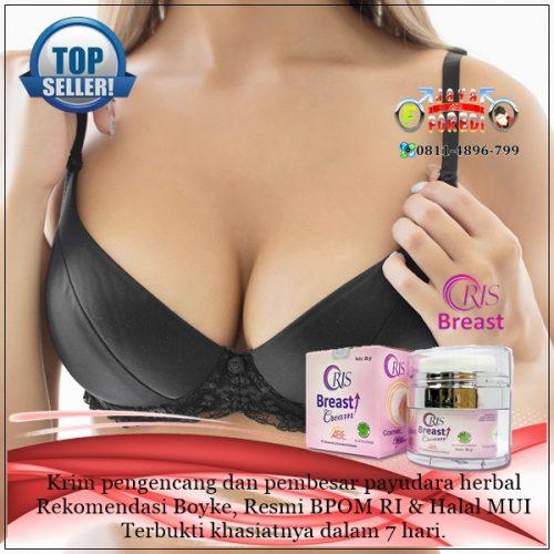 Jual Oris Breast Cream asli harga murah di Temanggung Jawa Tengah