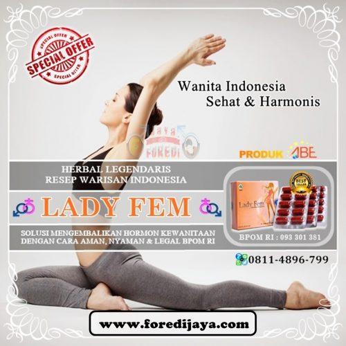 Jual Ladyfem Murah di Barito Kalimantan Tengah